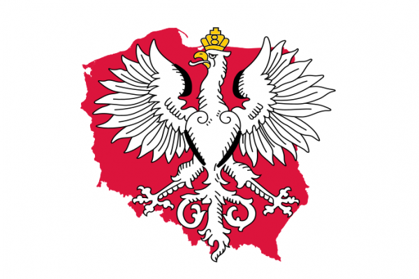 Królestwo Polskie A.D. 2020?